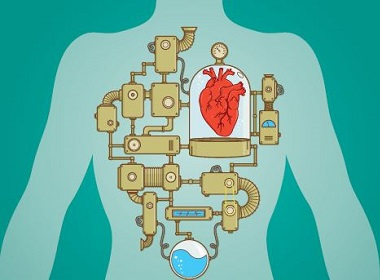 The Right Device - Therapeutic devices enhance heart function